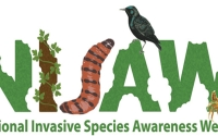 National Invasive Species Awareness Week is observed from February 25-March 3, 2019.