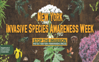 Invasive Species Awareness Week
