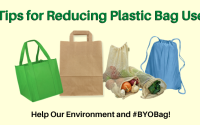 Reducing Plastic Bag Usage