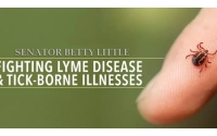Lyme Disease or other tick-borne illnesses.