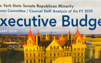 Staff Analysis of the FY 2020 Executive Budget - WhiteBook