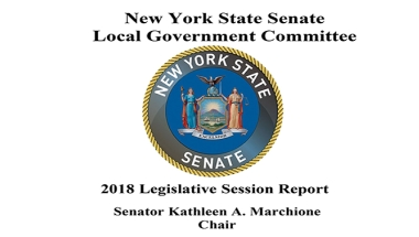 2018 Report of the NYS Senate Standing Committee on Local Government