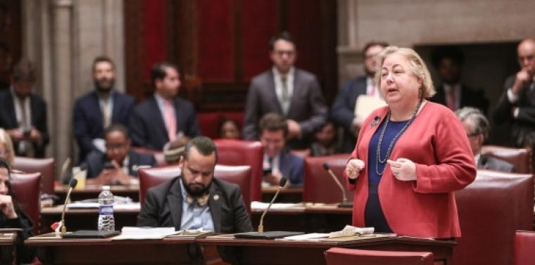 Sen. Krueger debates on the Senate floor.