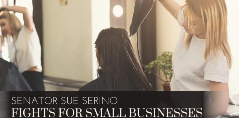 Senator Sue Serino Protects Small Businesses