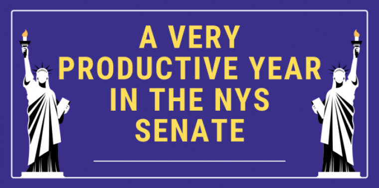 A Very Productive Year in the NYS Senate