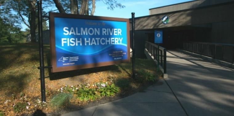 The Salmon River Fish Hatchery