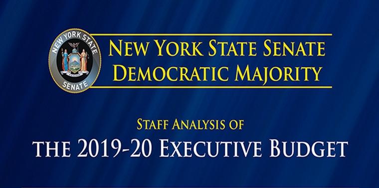FY2020 Executive Budget - The Blue Book