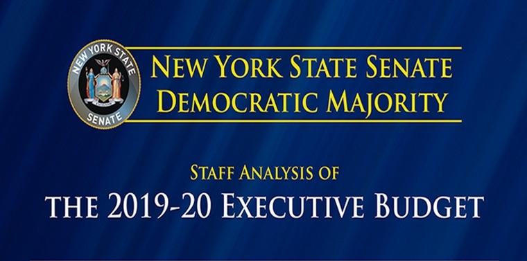 Staff Analysis of the 2019-20 Executive Budget