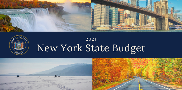 2021 New York State Budget