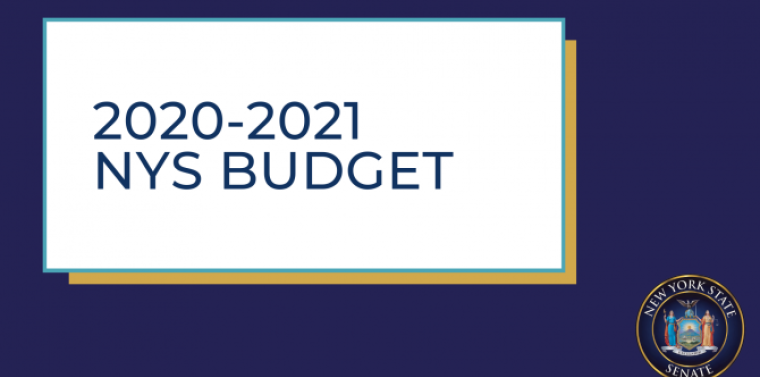 NYS Budget 2020-2021 update