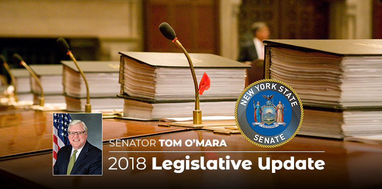 "In his December 2018 ""Legislative Update,"" Senator O'Mara looks ahead to the 2019 session of the New York State Legislature."