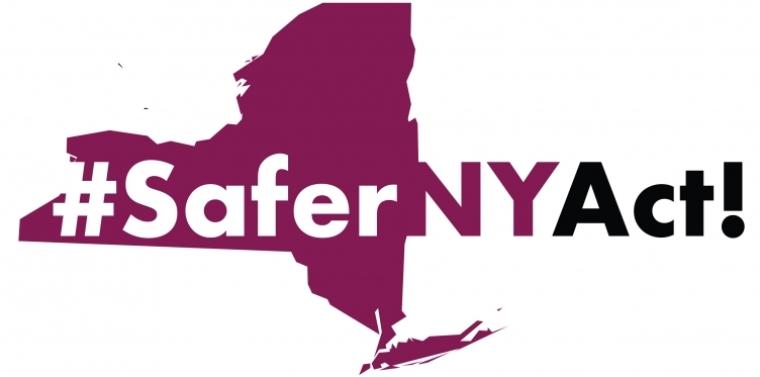 Safer NY logo