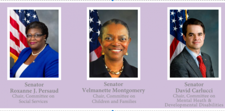 Senator Montgomery, Senator Persaud and Senator Carlucci sponsor Roundtable Examining the State of our Youth: New York State Foster Care