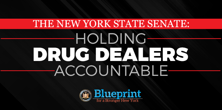 Senate passes larees law to hold drug dealers accountable for senate passes larees law to hold drug dealers accountable for overdose deaths malvernweather Choice Image